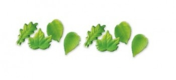 Puulehed rohelised 12tk