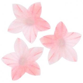 Vahvlililled mini Roosad varjundiga 50tk